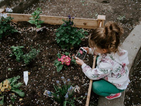 MdB Sylvia Gabelmann unterstützt Petition für den Erhalt des Prinzessinnengarten-Kollektivs in Berlin-Neukölln
